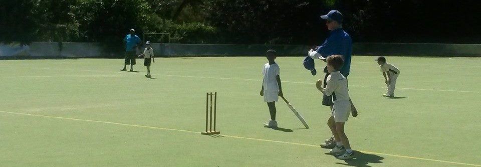 Jr cricket_01